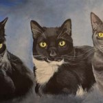 3cats