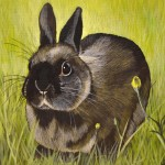 Black Bunny in Grass Painting