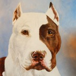 Territer Dog Painted Portrait
