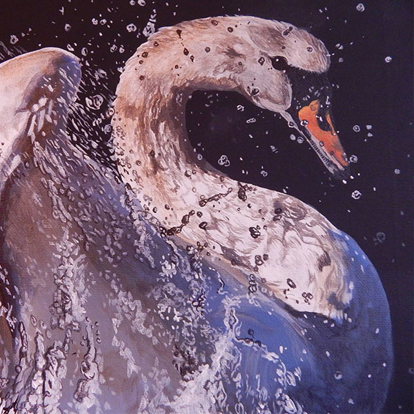 swan-black-featured-image1