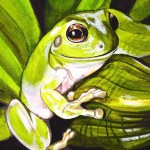 treefrog painting