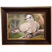 dove-featured-image