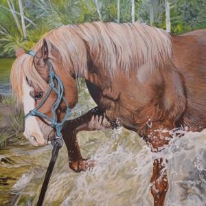 HorseinWater